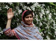 Malala räcker upp en hand för Plans kampanj för flickor Because I am a girl