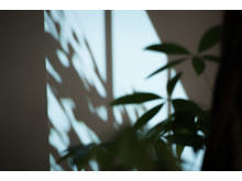 Sony_Hidden Senses_17