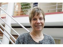 Karin Beland Lindahl