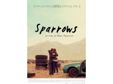 poster-sparrows