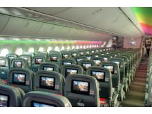 787 Dreamliner Interior