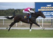 Square De Luynes vinner Stockholm Cup på Bro Park