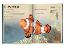 Das Riesenbuch der Meerestiere - Innenseite 1