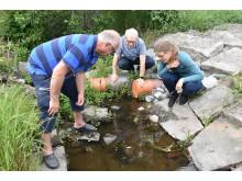 Ny kalkfilterbädd i Smedbyån minskar övergödning