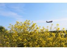 Swedavias flygpassagerarstatistik för juni 2018 illustreras med bild av flygplan vid Stockholm Arlanda Airport. Fotograf Alexandra Maritz.