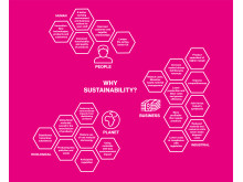 Infografik: Why sustainability?