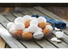 Hvite-og-brune-egg-i-kurv-MP-71971