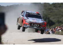 Hayden Paddon vinner VM-runde i rally