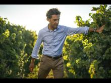 Ett vakande öga och en vårdande hand i vingården.