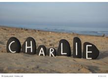 Was Charlie mir bedeutet