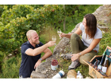 Picknick in den Thüringer Weinbergen