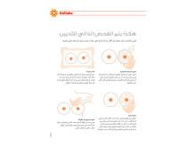 Slik undersøker du dine bryst - arabisk.