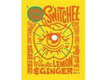 Switchel, ny frisk och fräsch alkoholfri dryck