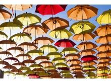 halloween_paraplyer_4