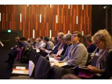 Publik under Mänskliga Rättighetsdagarna 2016