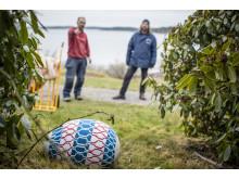 Per Agélii och Johan Zetterquist placerar ut ägg