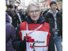 Ordförande Margareta Wahlström.