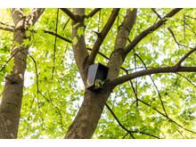 Denne fuglekassa finner du ved Grünerhagen Park
