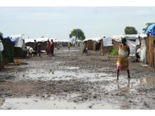 Store udfordringer i flygtningelejrene