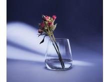 Brillant Lyslykt/Vase