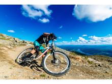 Downhillcykling i Åre