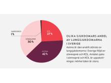 Lungrapporten 2017: Lungsjukdomarnas andelar