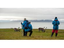 Complete-Spitsbergen-Expedition_Illustration-Photo_Alkhornet©Ester-Kokmeijer