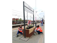 Flitwick station gardening with LTFC