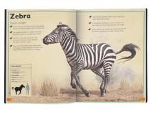 Das Riesenbuch der Wilden Tiere - Innenseite 1