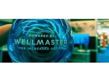 wellmaster_ball