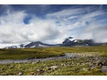 Simskarfjellet, foto: Steinar Johansen