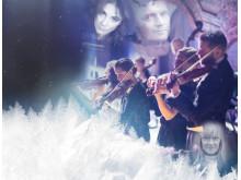 Nobelgala - en hyllning till vintern