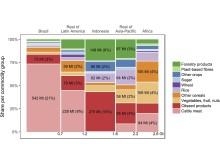 Fördelning av utsläpp från tropisk avskogning