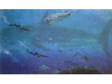 Hajar vid Antarktis för 35-50 miljoner år sedan