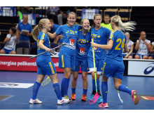 Sverige Finnkampen
