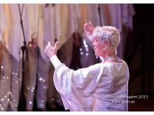 Stjärnjul 2015 Rönninge Show Chorus Dirigent Britt-Heléne Bonnedahl Copyright Göran Johansson