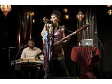Aida Nadeem Band