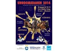 Ungdomsdagen i Skåne 2014