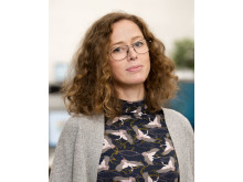 Marie Claesson, Energimyndigheten