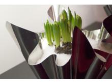 Stiligt och enkelt med hyacint