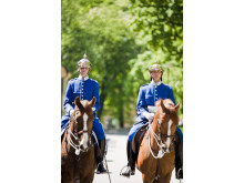 Hästar på Skeppsholmen