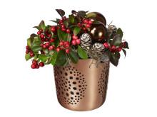 Jul på Interflora: Deco Noël, vaktelbär