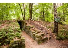 Eingang zur Jagdanlage Rieseneck in den Wäldern um Hummelshain