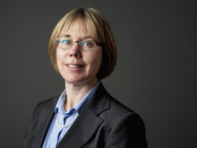 Karin Forsberg Nilsson, Professor, Uppsala University