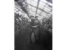 Par i Växthus
