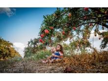 SAMYANG AF 14mm F2.8 Vollformat Moshe Filberg Nikon F Mount