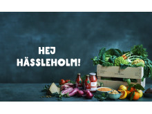 nya_städer_hässleholm