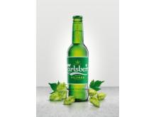 Bottle & hops with backdrop