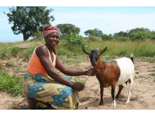 Lurdes Raimundo från Moçambique har fått getter av ActionAid