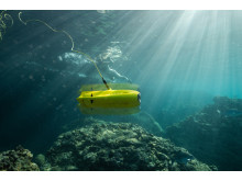 Chasing-Innovation - Gladius Mini underwater 1